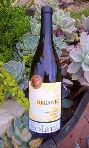 Solara bottle 2
